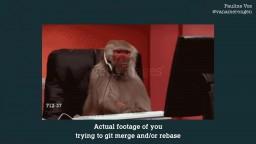Git Legit